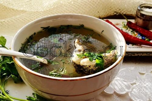 Рецепт ухи из щуки с фото пошагово