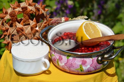 Напиток с красной смородиной – кулинарный рецепт