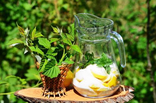 Квас из мяты – кулинарный рецепт